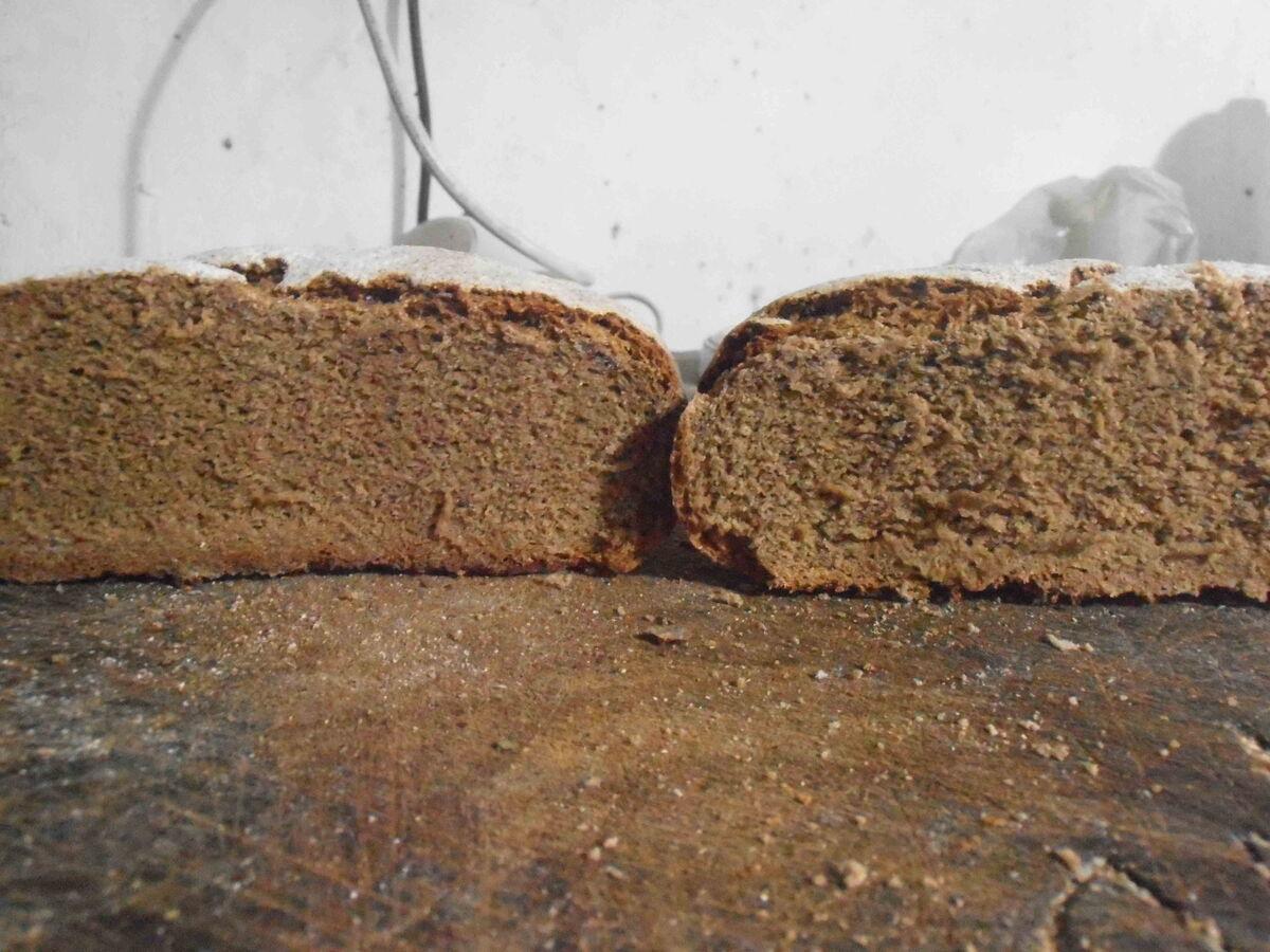 Brotfehler Teil 1 Misch Und Roggenbrote Homebaking Blog The